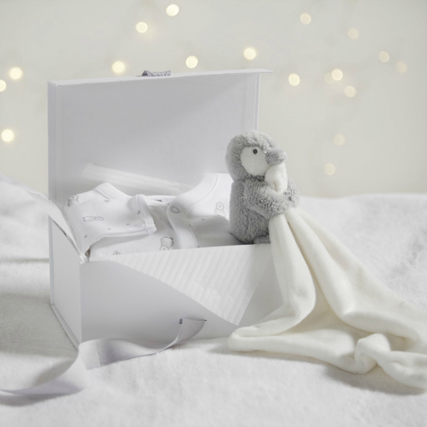 Snowy Sleepsuit Gift Set - Baby Shower Gift Idea