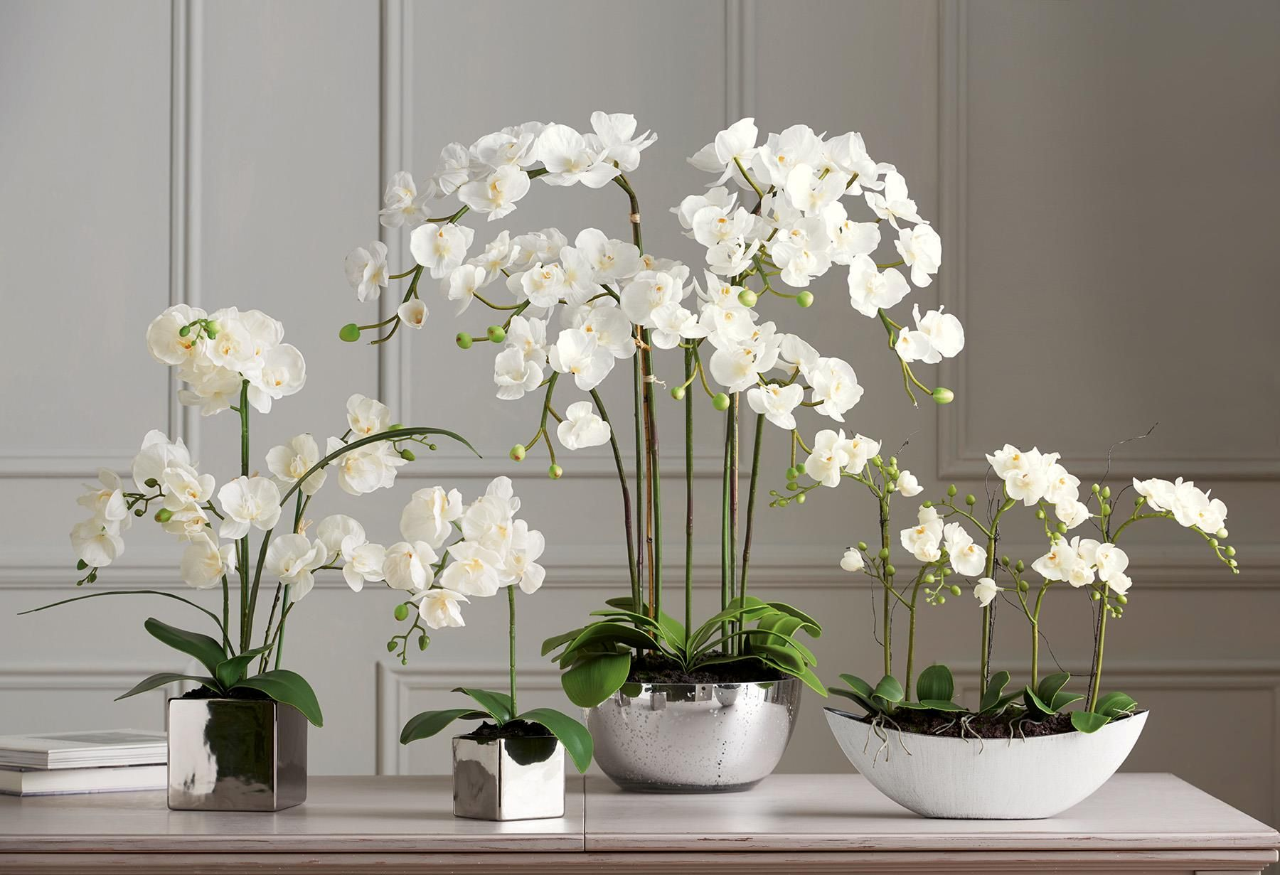 Artificial Orchids from Next