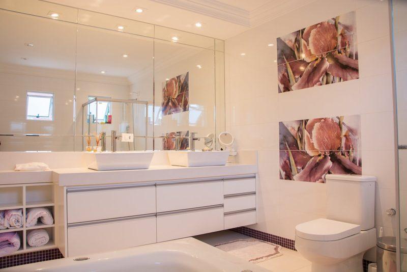 The Down-Lo On Bathroom TLC