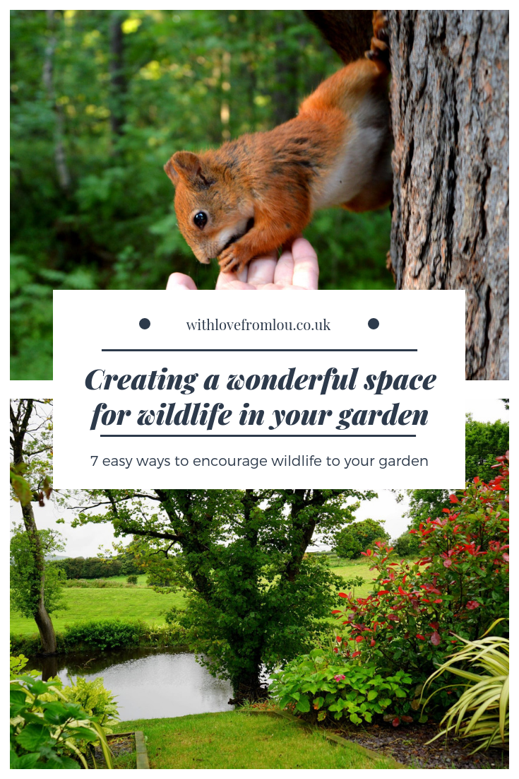 Creating a Wonderful Space for Wildlife in Your Garden